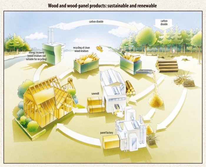 Carbon cycle EPF-wood-based-panel products
