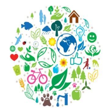 Environment action plan